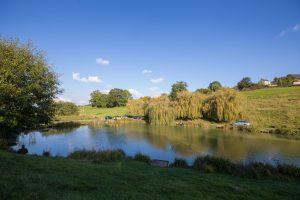 Field Lake